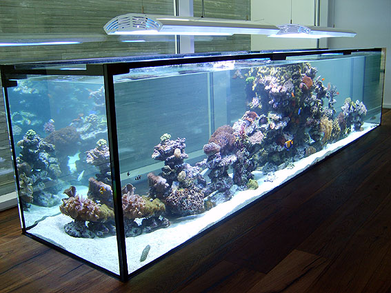 aquarium lampen für pflanzen länge 43 cm