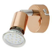 Eglo 94772 - LED Spotlight BUZZ-COPPER 1xGU10/3W/230V