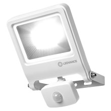 Ledvance - LED-Reflektor mit Sensor ENDURA LED/30W/230V IP44