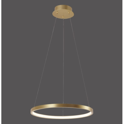 Leuchten Direkt 11522 12 LED Hängeleuchte CIRCLE LED19W230V