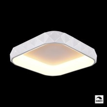 Luxera 18412 - LED Dimmbare Deckenleuchte CANVAS 1xLED/50W/230V